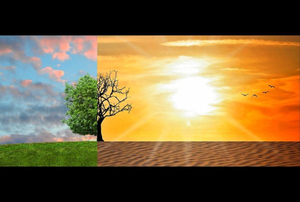 ORIGIN-VR-Environnement